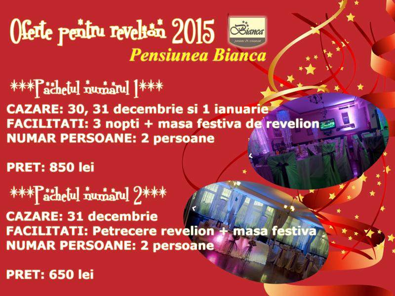 Oferta revelion 2014 cazare botosani